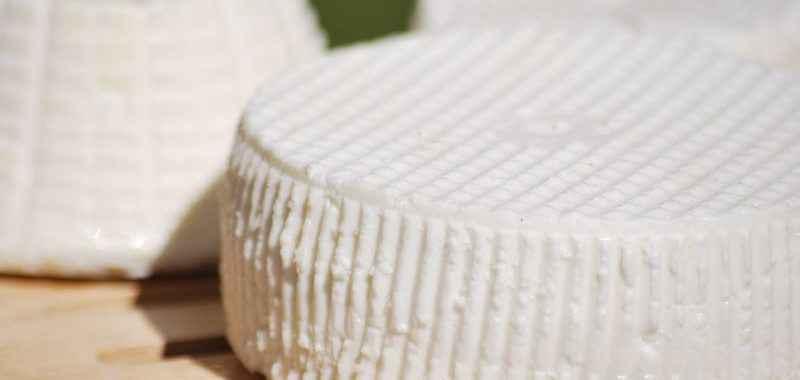 Formaggio di capra fatto in casa