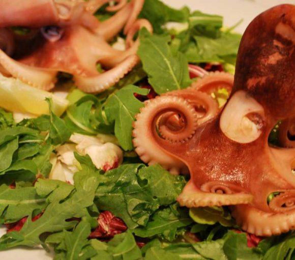 Ricetta moscardini in insalata