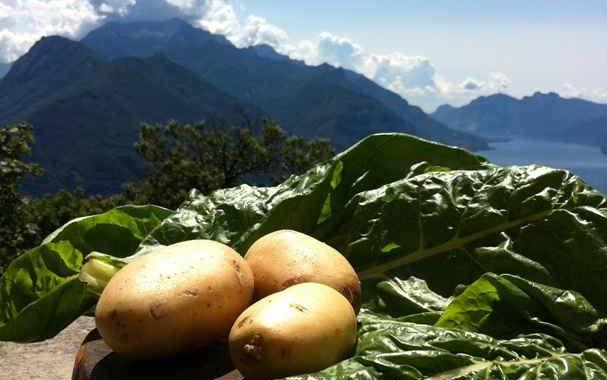 Gnocchi di patate e coste al burro e salvia
